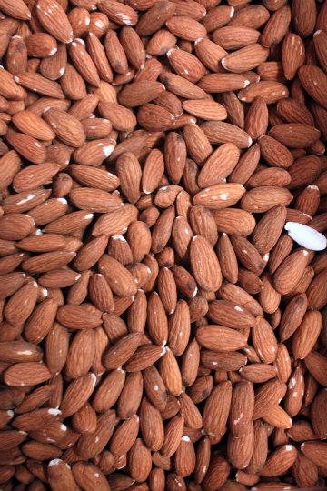 Lotta Almonds