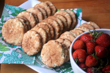 Strawberries & Snickerdoodles Boarding Snack