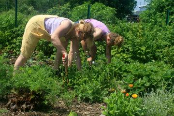 Gardening Duo 2